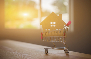 image of house in a shopping cart indicating home purchase