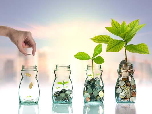 Investing Basics: 4 Ways to Grow Your Money